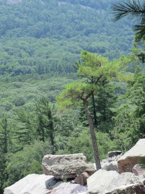 Devil's Lake State Park, Wisconsin - View from East Bluff