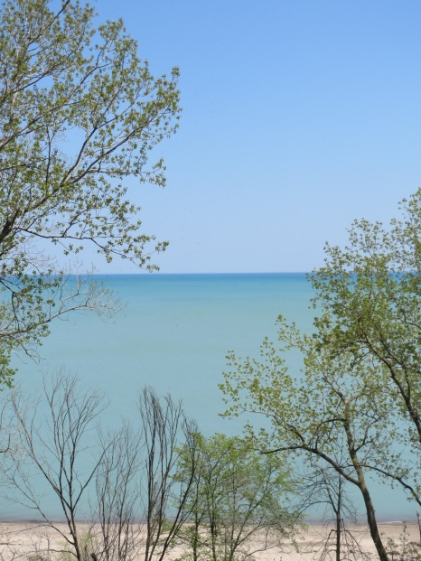 Openlands Lakeshore Preserve, Illinois.