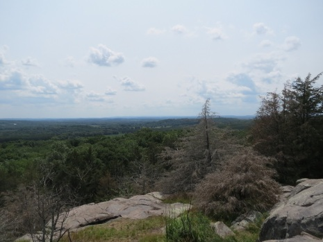 Observatory Hill State Natural Area, Wisconsin.