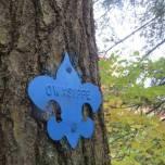 Trail Marker, Blue Trail